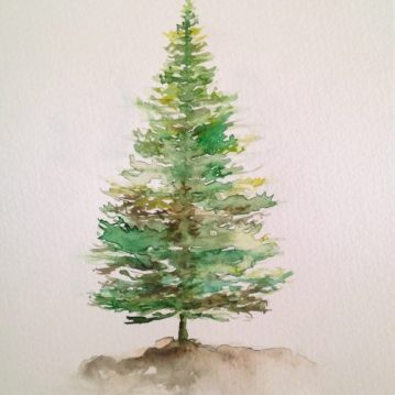 5 Pine, tree 5, 21 x 15 cm. Sold