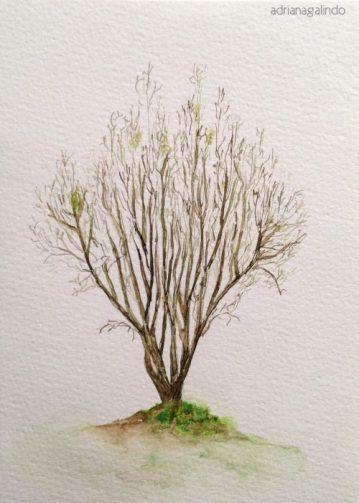 7 Árvore, tree 7, 21 x 15cm. SOLD