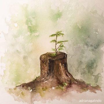 23 Árvore 23, tree 23, aquarela, watercolor , 30 x 21 cm. Disponível / Available