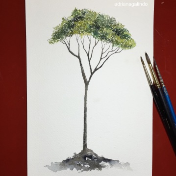 25 Jequitiba, Árvore 25, tree 25, aquarela, watercolor , 15 x 21 cm. Disponível / Available