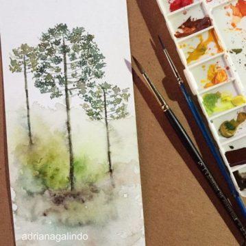 29 Araucarias, tree 29, árvore 29 watercolor, aquarela. SOLD