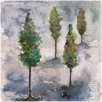 32 Pinheiros, arvore 32, Pine trees n.32, aquarela / watercolor. Available