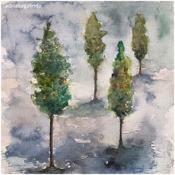 Pinheiros 32, Pine trees n.32, aquarela / watercolor. Available