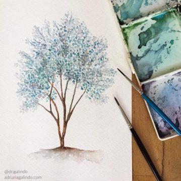 33 Eucalipto prateado, árvore 33 / Eucalyptus pulverulenta tree 33, watercolor, aquarela. Sold