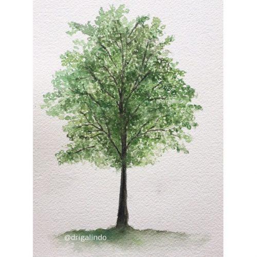 40 Árvore n. 40, Tree 40, Poiters/França, - obra que conclui o projeto #40treesprojet