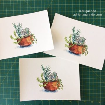 prints fineart suculentas